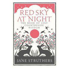 Terrain Red Sky at Night #shopterrain