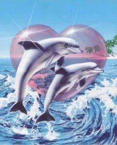 Desktop hintergrund delfine