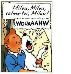 Tintin tries to calm a terrified  Milou || Flight 714.