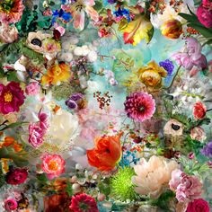 Etude Pour Un Apres Midi picture from the series Distorted Nature by Isabelle Menin, LUMAS Artist ✓ Art Floral, Flower Graphic, Jan Van Eyck, Seattle Art, Nature Artists, Photo D Art, Peter Paul Rubens, Isabelle, Art Studies