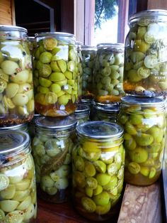 Pickled green tomatoes, four different ways