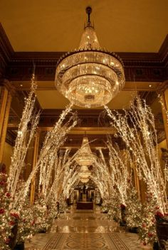 The Roosevelt Hotel in New Orleans - beautiful!