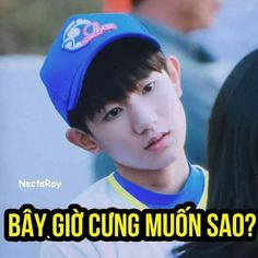 Read Chap 81 from the story Ảnh Chế TFBOYS 1 by VngThinNguynDch (Black Death) with 205 reads. Interesting Meme, Funny Images, Funny Pictures, Funny Good Morning Memes, Funny Stickers, Girl Short Hair, Troll, My Idol, Chibi
