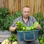 Home Vegetable Garden, Growing Vegetables, Country Life, Green Beans, Fruit, Plants, Humor, Agriculture, Vegetable Gardening