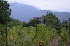 Kakheti region,Shilda First Night, Georgia, Mountains, Nature, Travel, Naturaleza, Viajes, Destinations, Traveling