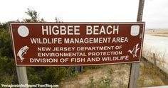 HIGBEE Beach in Cape May New Jersey - One of the best places to find the Cape May Diamonds