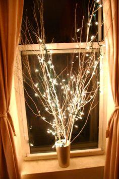 pretty lit tree limbs!