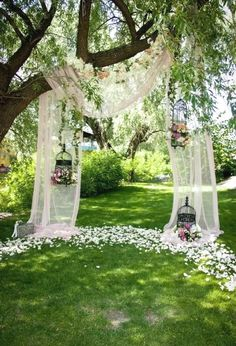 Wedding Spring Green Park Grassland Curtain Backdrop Background Photography Photography Techniques Tips Photography of Photography Wedding Ceremony Ideas, Fall Wedding, Wedding Venues, Dream Wedding, Wedding Backdrops, Outdoor Ceremony, Wedding Arches, Outdoor Decor, Wedding Ceremonies