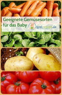 Geeignete Gemüsesorten für das Baby. Eignen sich Möhren, Pastinake und Kürbis zur Beikosteinführung und ab wann sind Spinat, Kohlrabi und Rote Beete mit Nitrat für das Baby geeignet? Wir stellen euch die wichtigsten Gemüsesorten von Kartoffel über Blumenkohl und Brokkoli bis hin zu Spargel vor und sagen wann sie sich für Babybrei und Beikost eignen. Passende Rezepte gibt es auch dazu: http://www.breirezept.de/gemuesesorten.php