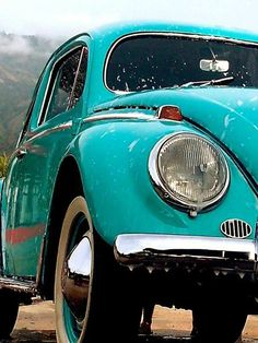 A bug in turquoise - heavenly!