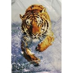 Looks so real - Queen Size Blanket Tiger