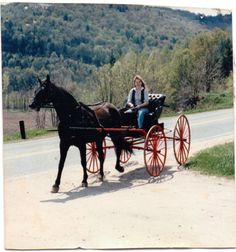 Driving my horse to town.