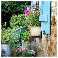 Allotment Gardening, Blue Shutters, Edible Plants, Outdoor Living, Allotments, Cottage, Birds, Petra, Gardens