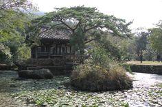 Seyounjeong Bogil-islands