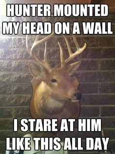 37 Best Funny Deer Hunting Meme Images Funny Deer Funny