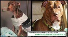 gorgeous patrick one year later.  it's incredible what love can do. <3