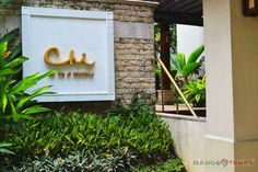 . Shangri La, Mango, Hotels, Tours, Plants, Manga, Flora, Plant
