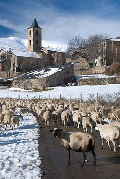 #Llessui, uno de los pueblos más bonitos del Pallars Sobirà, en el Pirineo Catalán. Es el más alto del Valle de Àssua, y está a 12 Km de Sort.