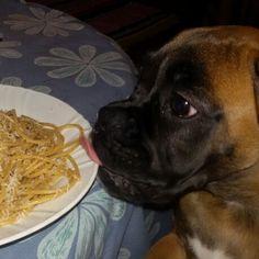 Bandidas ladra di spaghetti!