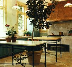 Enormous copper hood, double work tables....and, of course, a lemon tree!