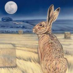 .moonlight hare