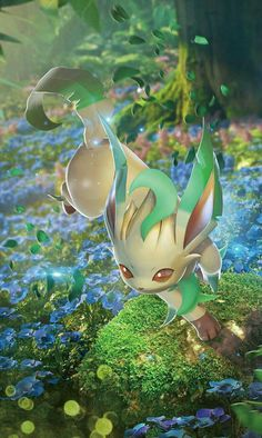Leafon in its original region/home or Habitat.
