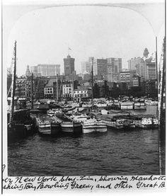 Lower New York Skyline by William Herman Rau