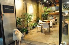 Thanks Nature Cafe in Seoul. ♥