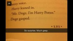 Harry Potter fans on the internet have recently remembered that there is a character in the books named Elphias Doge. | In Case You Forgot, There Is A Harry Potter Character Named Elphias Doge