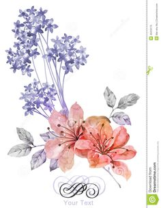 watercolor-illustration-flower-simple-background-decoration-as-43419175.jpg (1009×1300)