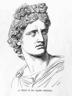 Apollo Belvedere rendering of detail