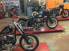 Harley Davidson, Shovel, Switzerland, Twins, Motorcycle, Dustpan, Motorcycles, Gemini, Twin