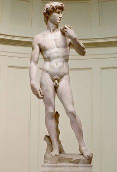 David- Michelangelo  c. 1501
