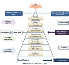 Níveis Neurológicos (Parte I)