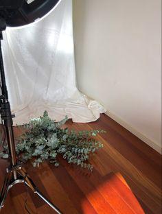#photoshoot Minimalist Photos, Photoshoot, Places, Photo Shoot, Lugares, Photography