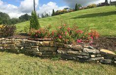 Kamenna zidka na zahrade se skalkou