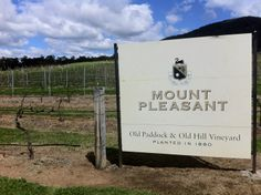 The natural beauty of the Mount Pleasant Cellar Door is framed by the backdrop of the stunning Brokenback Range and whether you are just starting your journey of wine discovery or you are well versed in the wonders of wine, a trip here is a must for all visitors to the Hunter Valley.