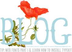 Blog Tip: Web Fonts & TypeKit