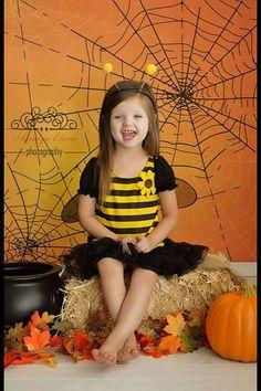 Halloween Backdrop - Spider Web Photo Background - Holiday Back Drop - Item 2142 - The Backdrop Shop