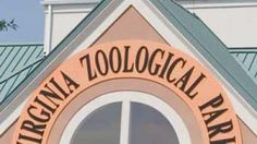 In every vacation plan, there must be a zoo. Virgina Beach, Virginia Beach Vacation, Beach Trip, Vacation Planner, Vacation Ideas, Spring Break, Army, Hat, Spaces