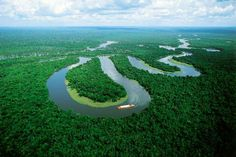 I'd have absolutely no idea where to begin...but to catch a glimpse of the Amazon Rainforest would be awe-inspiring...