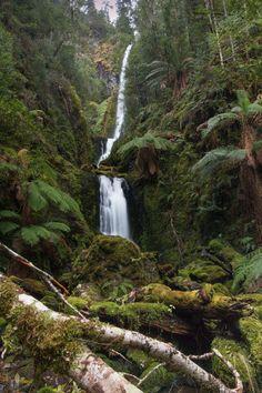 Waterfalls of Tasmania - Quaile Falls