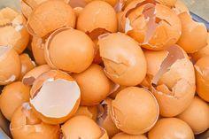 Wiesz ile cennych właściwości kryje w sobie skorupka jaja?To doskonały sposób na uzupełnienie wapnia w