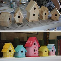 Look what you can do with some inexpensive birdhouses & paint!