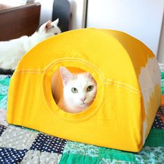 This kitty tent is made using an old (or new) t-shirt, a couple of coat hangers and a few inexpensive supplies. You can make in an hour tops and use colourful or printed t-shirts for a custom kitty tent design.