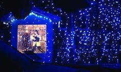 Elvis singing Blue Christmas by bhartzer, via Flickr