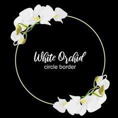 الإطار دائرة زهرة الأوركيد التصميم زهري الصيف خلفية زهر الحدود بطاقة نبات ربيع استوائي توضيح زهرة إكليل معزول أبيض مس Orchid Flower Flower Circle White Orchids
