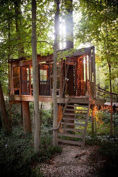 Tree house stairs interiors 63 Ideas for 2019