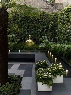 BLACK AND GREEN!! Perfect serene garden