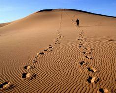A Nice Long (Hot, Dry…) Jog Across the Desert